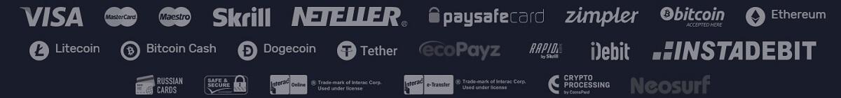 wildtornado payment methods